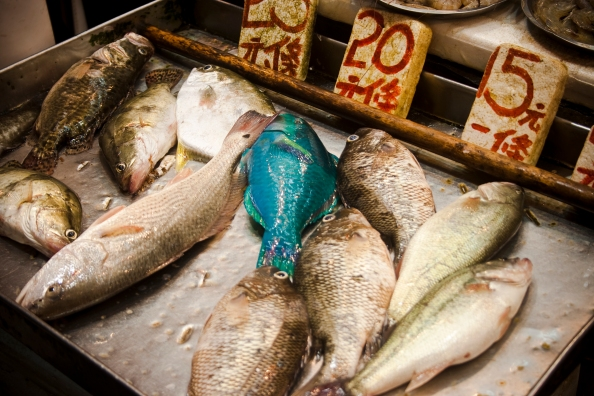 Photo of Hong Kong fish market